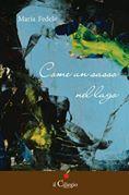"""Copertina """"Come un sasso nel lago"""" di Maria Fedele"""